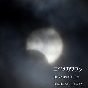 5210461_620